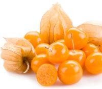 ფიზალისის კენკრა / inca berry, 100g