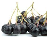 შავნაყოფა ხმელი ცირცველი / aronia berry, 200 g