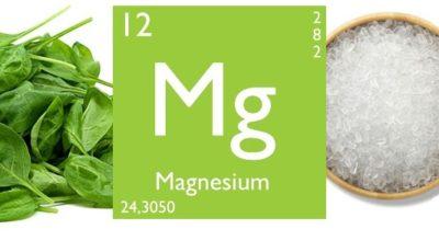 magnesium2