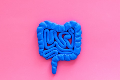 Intestines health. Guts on pink background top view.
